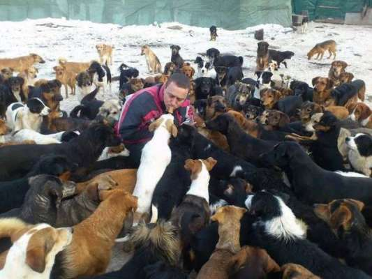 Kindhearted Man Takes Care Of Over 750 Dogs