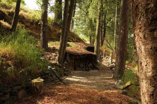 Oregon's Real-Life Hobbit Has Been Living Under A Hill For Over Two Decades