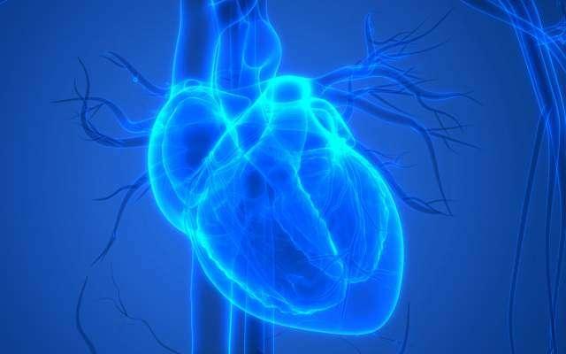 Chicago biotech company 3D prints a mini human heart